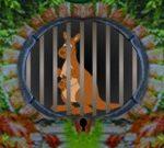 Kangaroo Escape
